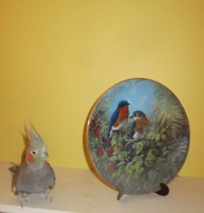 Collector's Bird Plate with Stand -  Langley (Walnut Grove)