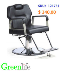 Greenlife Etobicoke Reclinable Barber Styling Chair from $220