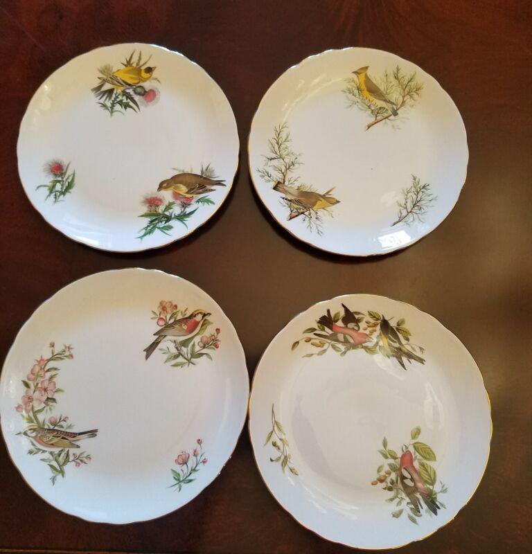 """Set of 4 TUSCAN  CHINA AUDUBON BIRDS  PLATES 8"""""""