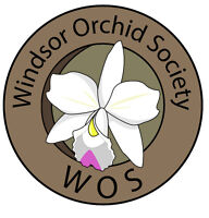 Orchid Show and Spoil Mom Sale
