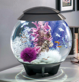 BiOrb Halo 60 fish tank with everything you need - just add fish!!