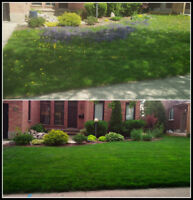 Lawn Maintenance and Garden Care Services