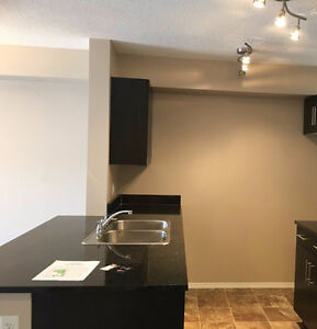 2 bed / 2 bathroom apartment for rent (1000$ for July)