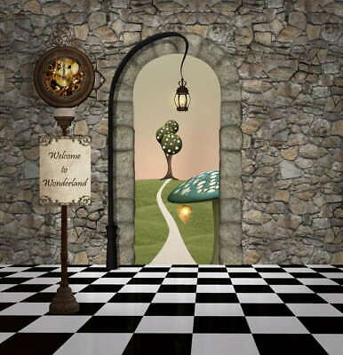 7x5ft Alice princess  Stone House Mushsroom backdrop Wonderland party background - Stone Backdrop