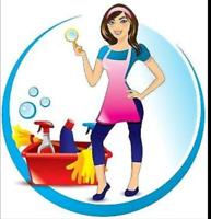 >>25$ an hour professional cleaning services text 226 504 1321<<