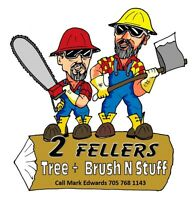 2 FELLERS TREES + BRUSH 'N STUFF