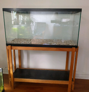 35 gal Aquarium + Wood Stand