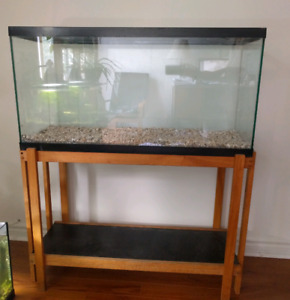 35 gallon tank with wooden stand