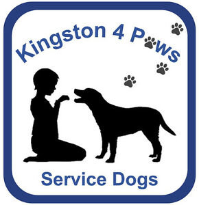The Perils of Persephone Fundraiser for K4Paws Service Dogs Kingston Kingston Area image 1