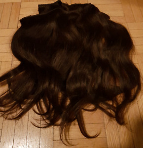 Clip in Extensions (human hair)