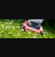 Professional  lawn mower grass cutting