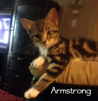 Armstrong and Jolson