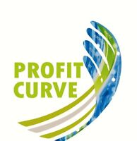 Your Focus on Your Business Profit Drivers.