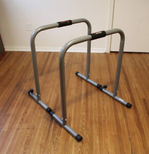 Dip Stand Exercise Bars