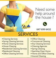 EUROPEAN LADIES CLEANERS AVAILABLE . Call Now 647. 699. 6432
