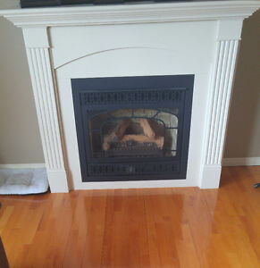 Propane Fireplace/with all accessories