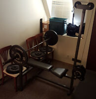 Bench Press & Lat Pull Down plus 385 LB Weights
