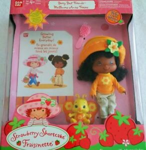 Orange Blossom with Marmalade - Strawberry Shortcake Friend