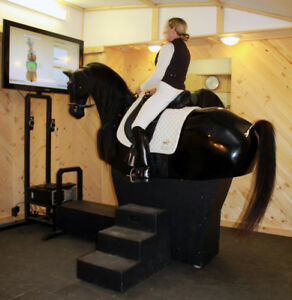 Riding Lessons on the only Horse Simulator in Ontario