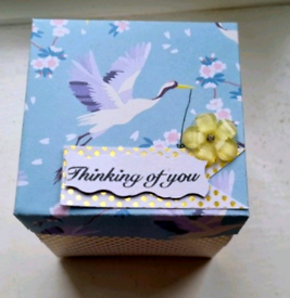 Explosion surprise album box for anniversary /birthday ect