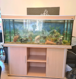 5ft Fish Tank with Stand, Filter and Extras SOLD