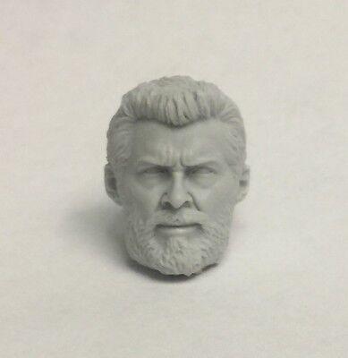 Marvel Legends ML Shrunk Hot Toys Logan 1:12 scale custom head cast