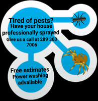 professional pest spraying