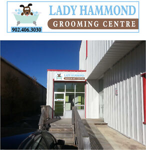 Affordable, reliable dog and cat grooming services!