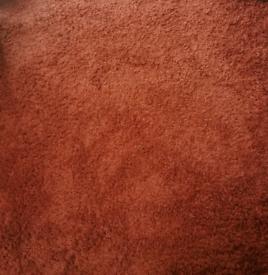 XL burnt orange next rug