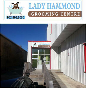 Affordable Pet Grooming At Lady Hammond Grooming Centre!