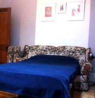 Chambre meublée dans 6 1/2 ensoleillé, métro Beaubien/Rosemont