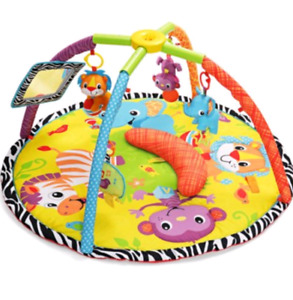 Infantino and Bright Starts Gym Playmat