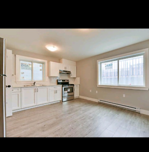 2 bedroom basement in langley  Willoughby