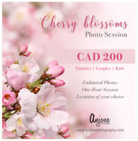 Cherry Blossoms Photo Session at CAD 200!