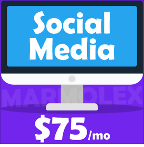 A Social Media Manager Just For You