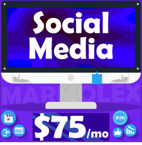 Your Own Social Media Manager