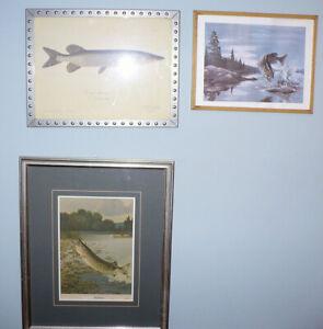 Vintage Canadian Sport Fishing Framed Art-Muskie-Pike-Bass