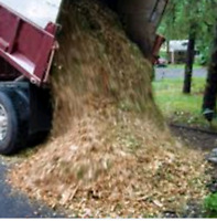 Want Mulch Delivered