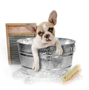 Barks and bubbles dog grooming