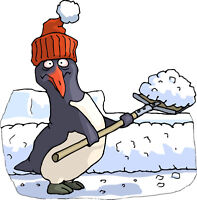 Snow blowing and shovelling