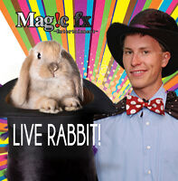Birthday Magic Show With+Real Rabbit+Loot bags $249.99