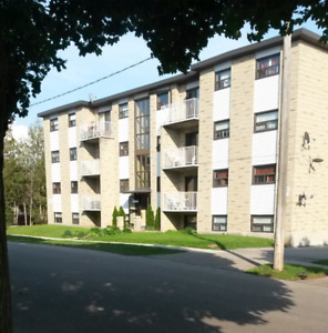 3 bedroom apartment Avail. Oct 1