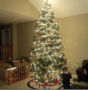 12 Foot Christmas Tree
