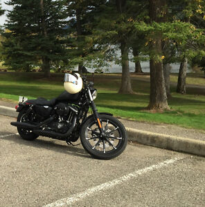 2017 Harley-Davidson Sportster Iron 883, H-D Financing Available