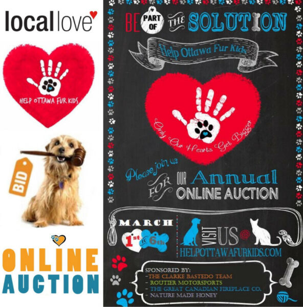 Online Auction Fundraiser! All NEW items! Great Deals