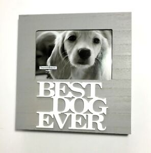 Frame: Best Dog Ever -Unsold Auction Item - NEW