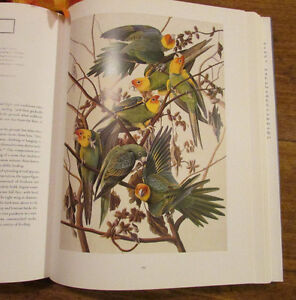 Audubon: The Watercolors for THE BIRDS OF AMERICA ** MINT ** Kitchener / Waterloo Kitchener Area image 3