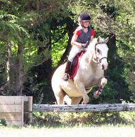 FREELANCE RIDING COACH AVAILABLE FOR PRIVATE LESSONS