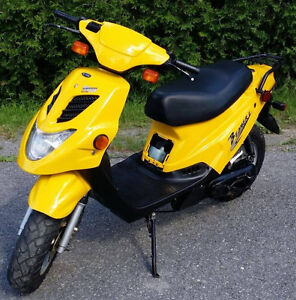 SCOOTER E-TON BEAMER 2  POUR HORS ROUTE OU CAMPING 500$