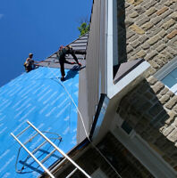 Carpenters, apprentices and roofers